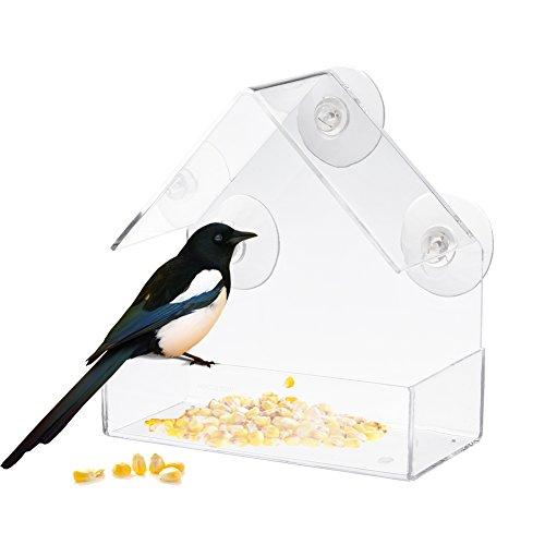 Hippicity fenêtre pour distributeur de graines pour oiseaux sauvages - 100% plastique acrylique Transparent avec 3 solide Extra ventouses inclus - Excellente idée de cadeau pour les amoureux de la nature