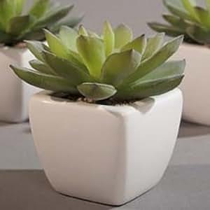 Künstlicher Kaktus in Keramiktopf, Kunstpflanze Topfpflanze Kunstblume mini