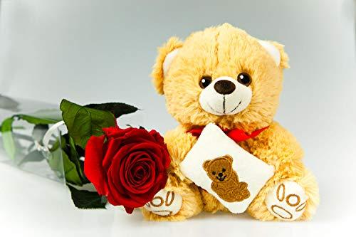 Rosen-Te-Amo - Ewige, rote Rose - 55 cm groß mit braunem Teddybär und herunterladbare Grußkarte - 3 Jahre OHNE WASSER haltbar - Konservierte-echte-Rose mit Kuscheltier