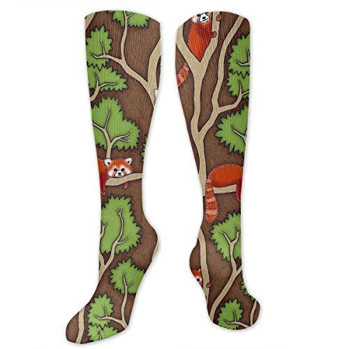 Forest Red Panda Kompressionssocken for Women and Men - Best Medical,for Running, Athletic, Varicose Veins, Travel.