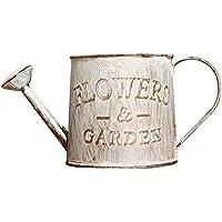 PROKTH Jarrones vintage Jarron decorativo Macetas decorativas para regar flores y decoración del hogar, con ventosas, para macetas, Style_b