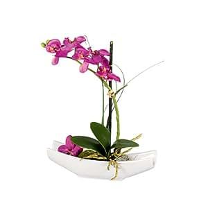 DPI - Orchidea phalaenopsis artificiale in vaso, in ceramica, colore: Viola