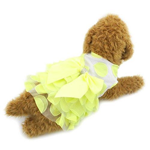 zunea Polka Dots Prinzessin Kleiner Hund Katze Tutu Kleid Rock Weste Shirt Schleife Spitze Pet Puppy Sundress Rüsche Outfits