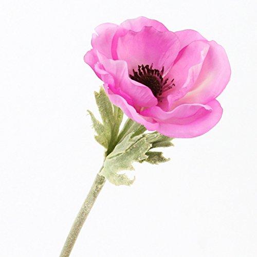 artplants Set 6 x Künstliche Anemone, rosa, 30 cm, Ø 7 cm – Kunstblume/Dekoblume