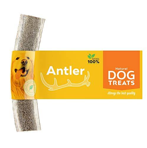 Geweih Kausnack für Hunde 100% Natürlich Hirschgeweih Kauspielzeug Kauknochen Hundeknochen, Größe Large -