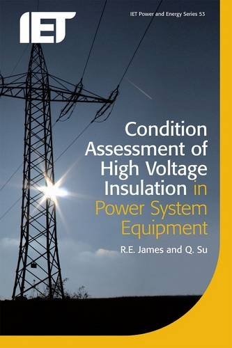 Condition Assessment of High Voltage Insulation in Power System Equipment (Iet Power and Energy, Band 53) -