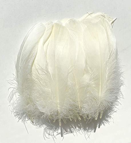 Großer Vogel Kostüm - LEBENSWERT 400pcs Weiße Federn 8-12 cm,Natürliche