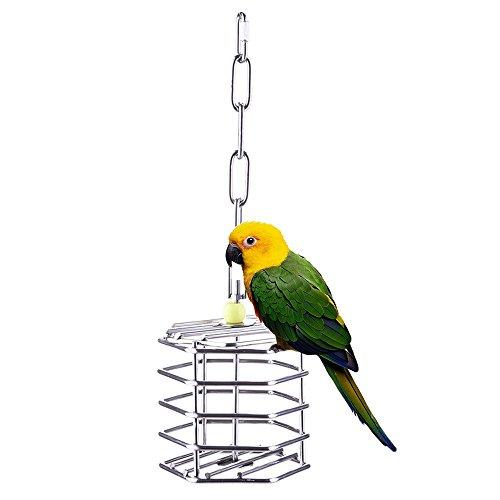 yunt creative Pet Parrot Uccello Foraging sistemi Foraging ruota da finestra per mangiatoia per uccelli giocattolo