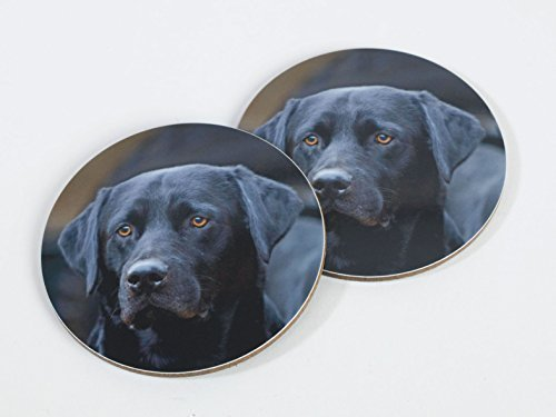 2-x-negro-perro-labrador-de-melamina-posavasos-por-charles-sainsbury-plaice-un-gran-regalo-para-los-