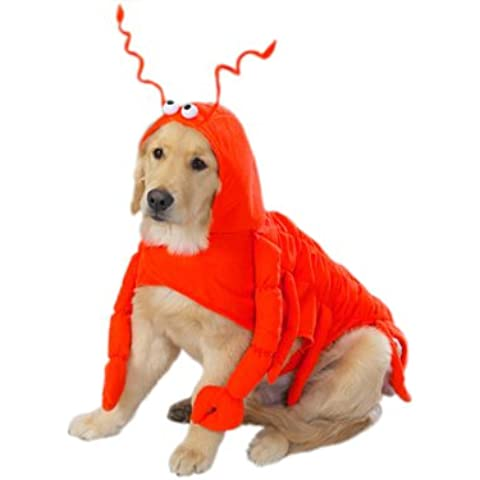 Casual Canine Lobster Paws Dog Costume, Small (fits lengths up to 12), Red-Orange by Casual Canine