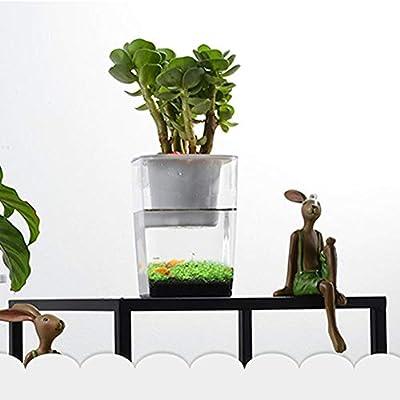 SOWLFE Aquarium Aquarium,Desktop Mini Fish Tank natürliches Ökosystem für Pflanzenwachstum