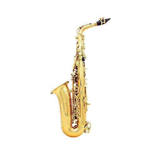 andoerr-saxophone-alto-sax-eb-be-alto-e-appartement-laiton-sculpte-motif-sur-surface-plastique-embou