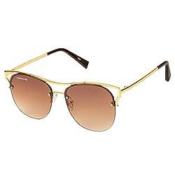 Danny Daze Round Sunglass (Gold) (D-2875-C2)