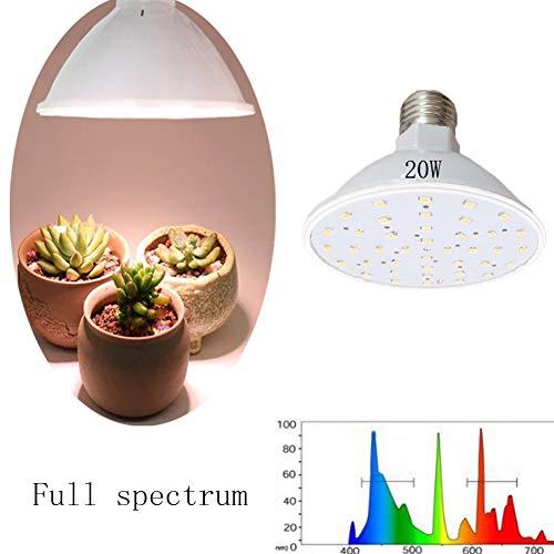 LED Pflanzenlampe 15W Pflanzenlicht Vollspektrum Mit 4M Draht Austauschbaren E27 Glühbirnen Für Zimmerpflanzen Gewächshaus