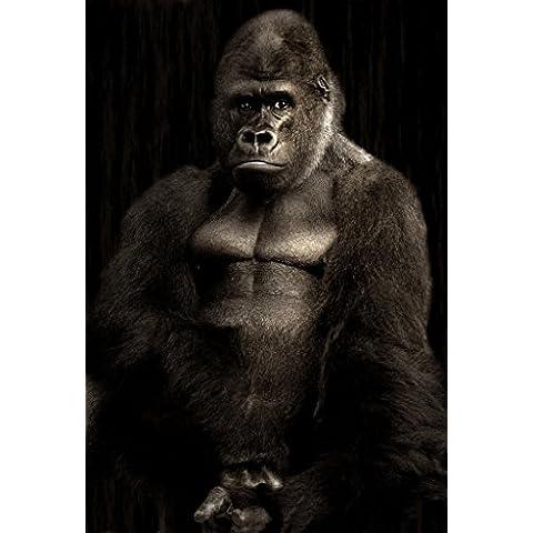 Retrato de gorila Póster en tamaños, papel, A6(Sample)