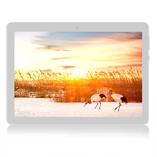 "tablet con sim telefonica e wifi Tablet Android - Schermo Quad core 10""RAM 2 GB"