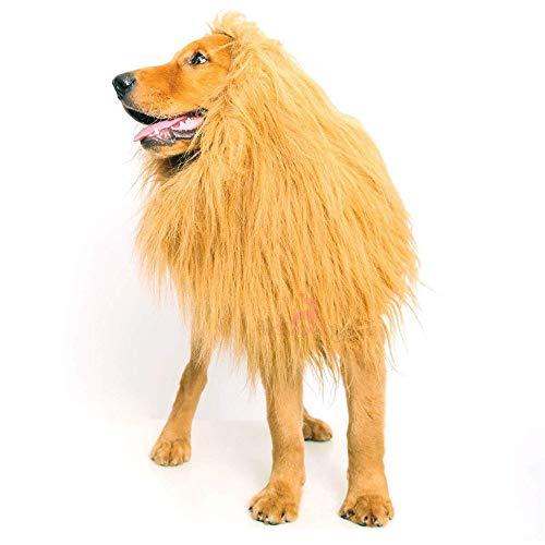 YING Disfraz león para Perros, 5 piquetas, Disfraz de león para Mascotas, para Perros pequeños o Grandes para Ropa, Festival, Disfraces con Orejas