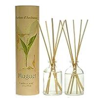 Provence et Nature: Maiglöckchen Raumbedufter (Raumduft) mit Holzstäbchen, 2 x 50 ml Glasflaschen preisvergleich bei billige-tabletten.eu