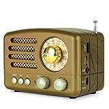 Radio PRUNUS Classique Bois Rétro Rechargeable FM AM(MW) SW, Lecteur MP3 Via SD/USB, Bluetooth, AUXiliaire, avec Cadran de 270° (Or)