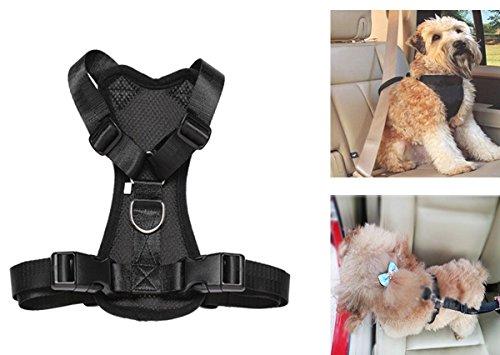 Arnés seguridad llevar mascotas coche, acolchado