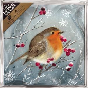 charity-christmas-cards-alm1254-robins-e-bacche-confezione-da-8-carte-venduto-in-aiuto-dei-woodland-