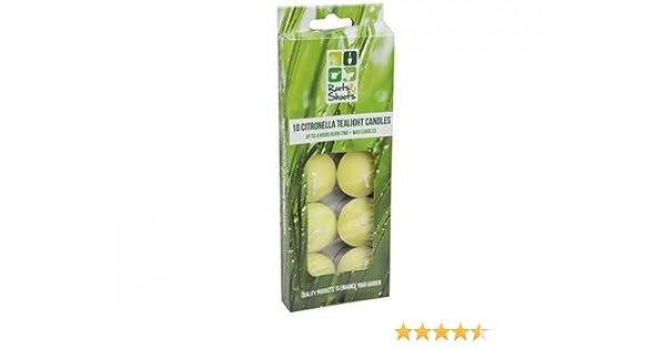 Roots n Shoots PMS Lot de 10 Bougies Chauffe-Plat Citronnelle en Couleur Fen/être
