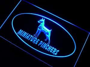 Enseigne Lumineuse j989-b Miniature Pinchers Dog Neon Light Sign