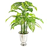 Leaf Grande Plante Artificielle en métal Motif Renard Aglaonema (Pois Vert éternel) 100 cm