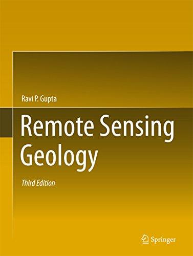 Remote Sensing Geology (English Edition) por Ravi P. Gupta