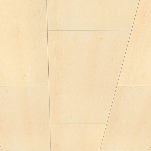 Avanti Wandpaneel und Deckenpaneel Arktik Birke 900 x 300 x 10 mm