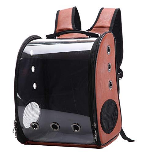 LLAni Katzen-Rucksack, tragbar, tragbar, für kleine Hunde, mit Platz und transparentem Kissen braun