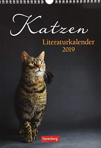 Katzen Literaturkalender - Kalender 2019