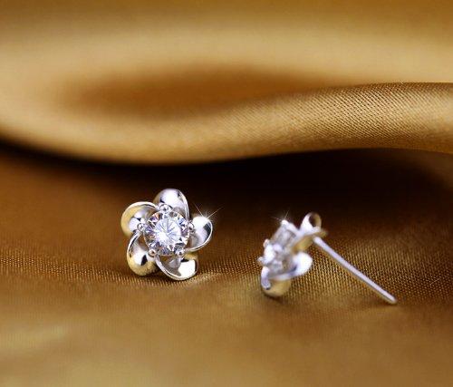 domire-ladies-earrings