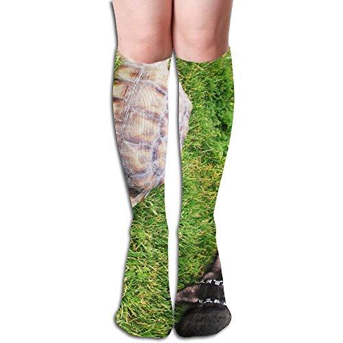 Piglet Women's Fashion Knee High Socks Casual Socks 50cm ()