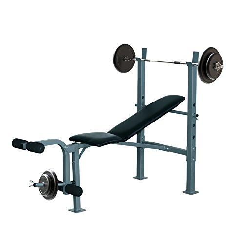 Homcom Banco de Musculación Banco de Pesas Maquina de Fitness Entrenar Musculos 165x68x114cm con Respaldo...