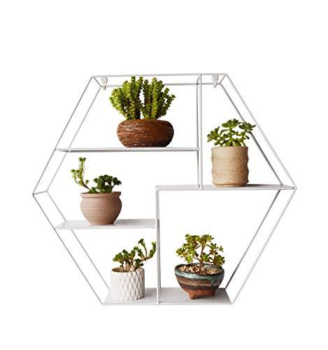 Rack merci viventi scaffale per scaffali da parete in metallo esagonale a parete/espositore per scaffali da parete per home office/loft scaffale per fiori in scaffale da parete per scaffali da gia