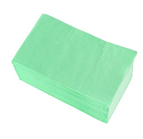 Papierservietten - 120er Pack Einweg-Dinnerservietten, 2-lagig, saugfähig, für Küche, Essen, Events, Partys mintgrün