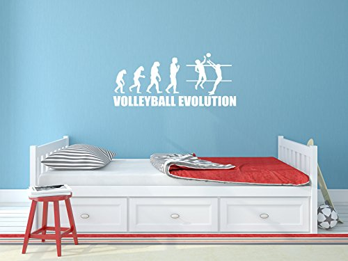Comedy Wall Art Volleyball Evolution - Weiss - ca. 70 x 30 cm