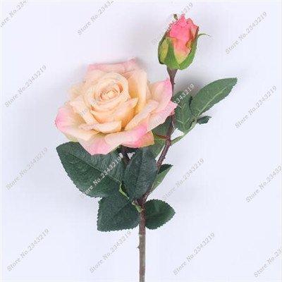 Exotique Miniature Bonsai Fleur Rose Rosas Graine Bricolage Jardin Maison Ménage et embellissant de purification d'air 110 Pcs/Sac 15