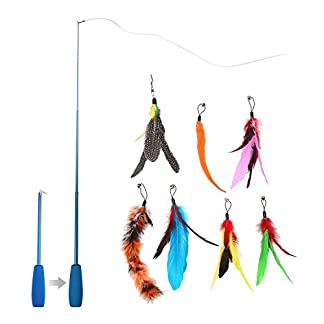AOLVO Funny Cat Kitten Pet Bird Feather Teaser Stick Wire Chaser Pet Toy Wand Beads Rod Play Cat Exerciser Catcher Toys Interactive AOLVO Funny Cat Kitten Pet Bird Feather Teaser Stick Wire Chaser Pet Toy Wand Beads Rod Play Cat Exerciser Catcher Toys Interactive 41VqTyp3i 2BL