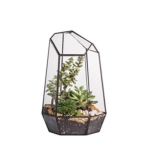 JINCAO Terrarium aus unregelmäßig geformtem Glas, geometrisch, Höhe 16cm 19cm 25cm, für Sukkulenten, als Übertopf, Blumentopf, für Farne/Moose, farblos, 25 cm