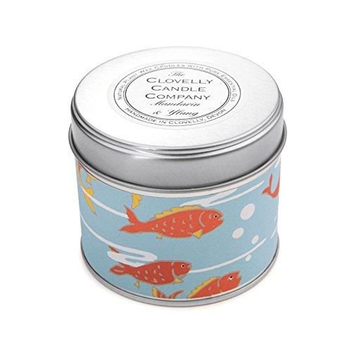 Clovelly vela Co. Natural hecho a mano-mandarina y Ylang Ylang vela de cera de soja (grande aromática vela