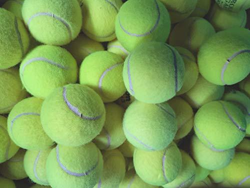 30 balles de Tennis utilisées pour Chiens – Balles utilisées des Grands Fabricants comme Slazenger, Dunlop, Wilson Head, etc.
