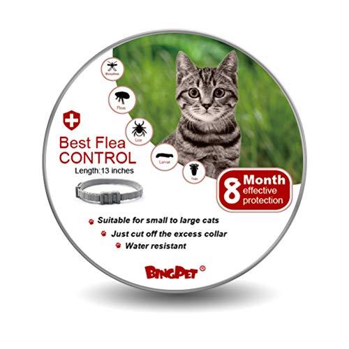BINGPET Cat Flea Collar and Tick - Best Flea Control Treatment for Kitten - 8 Month Effective Protection