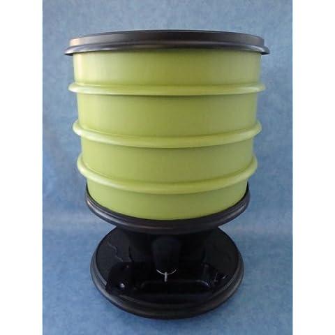 eco-worms–Vermi eco-worms colori verde chiaro