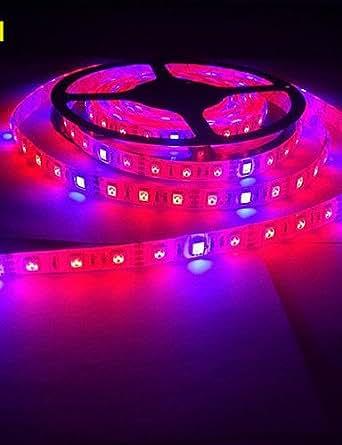KLM 5m morsen 5050 imperméable lumière de bande de bande flexible LED 4 rouge 1 bleu serre hydroponique plante lampe croissante (12v)