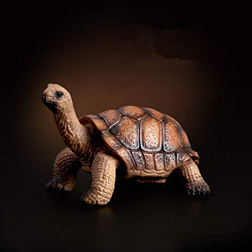 prbll Ornamente Spielen Meeräsche Schildkröte Modell Schildkröte Schildkröte Marine Life Spielzeug Braun Elefant Schildkröte Simulation Amphibie Modell Kinderspielzeug