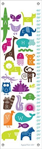 Oopsy Daisy ABC Tiere Rainbow von Kaufmännisches Design Studio wachstumsdiagramme, 12von 107cm
