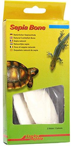 Lucky Reptile Sepia Bone, 1er Pack (1 x 70 g)