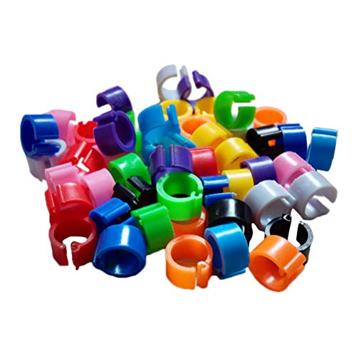 Balacoo-100-Pz-Bird-Foot-Rings-Clip-Band-per-piccioni-Pappagallo-Bird-Supplies-Colore-Casuale